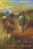 image of cover art for The Seven Wonders of Sassafras Springs