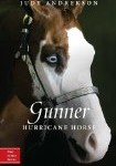 Storytime Standouts writes about middle grade fiction: Gunner by Judy Andrekson