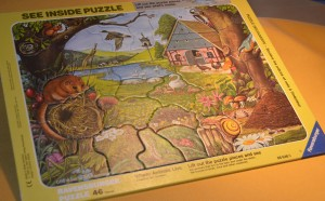 Ravensburger See Inside Puzzle